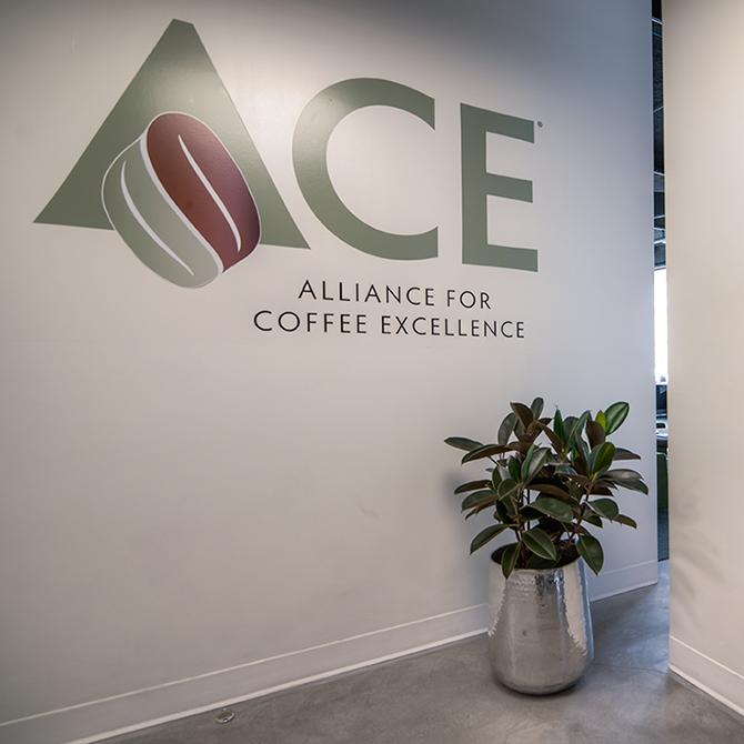 01_ACE_Office_05